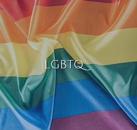 LGBTQ Link